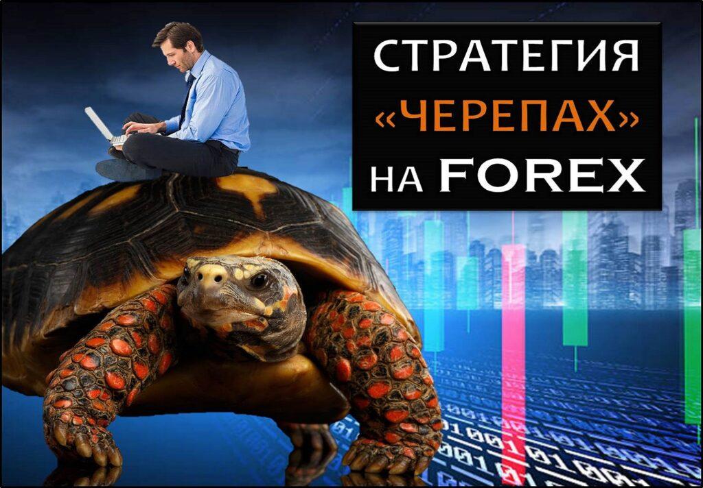 Стратегия черепах на форексе